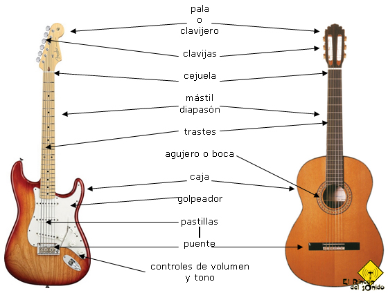 anatomia-guitarra